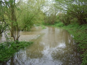 Flooding near Standon
